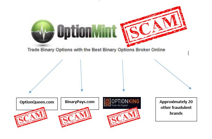 Binary options concierge scam paddy power referendum betting trends